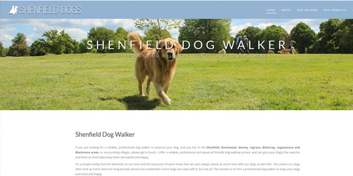 Shenfield and Brentwood Dog Walker